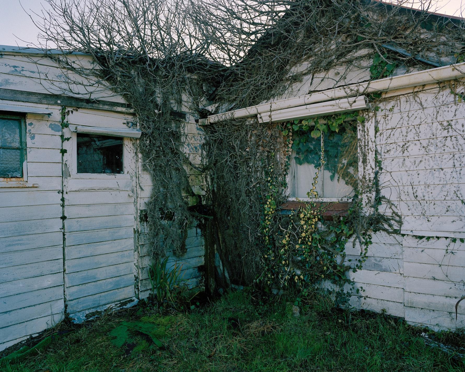 Joseph Divis' House, Waiuta 2016