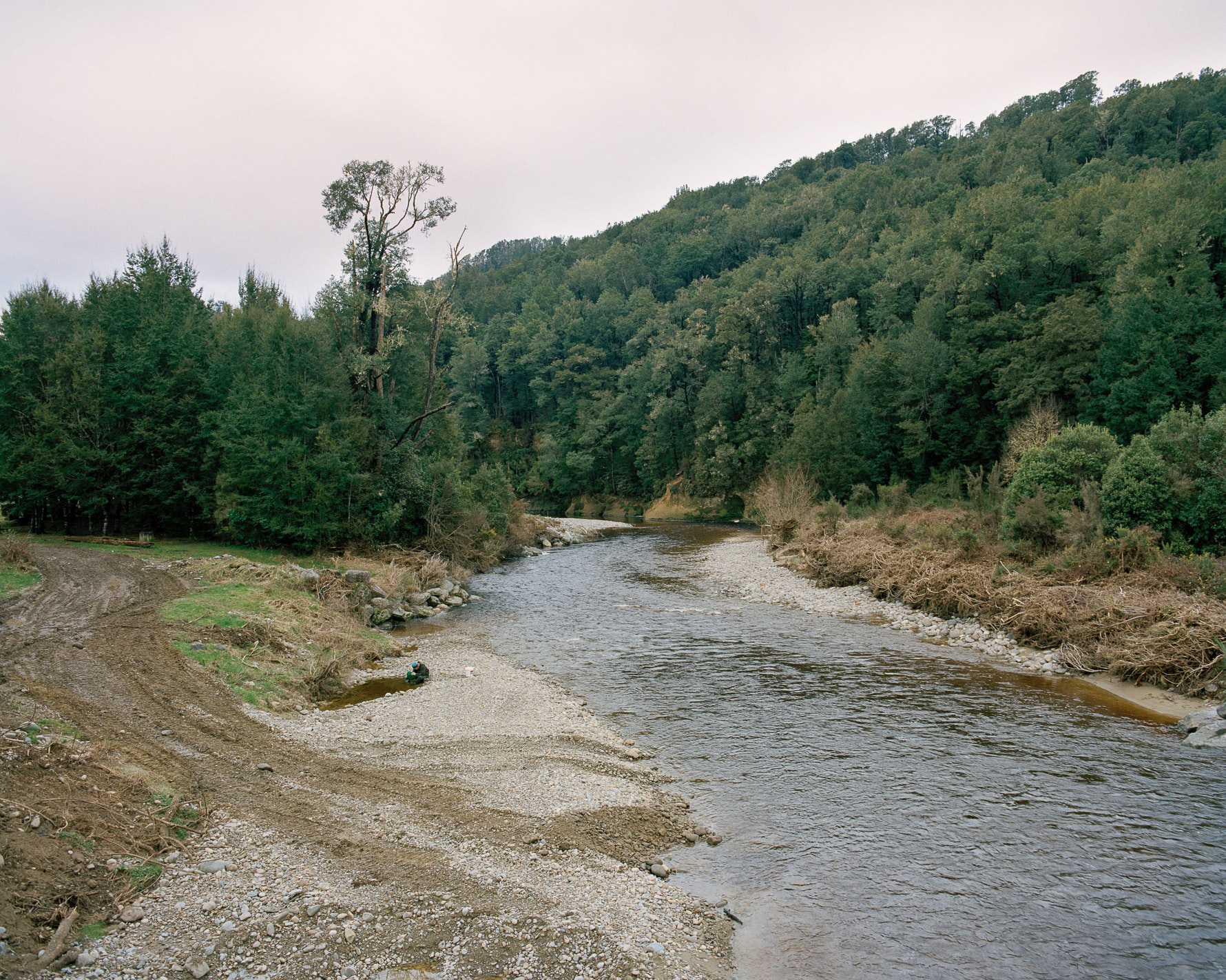 Gold Miner, Nelson Creek