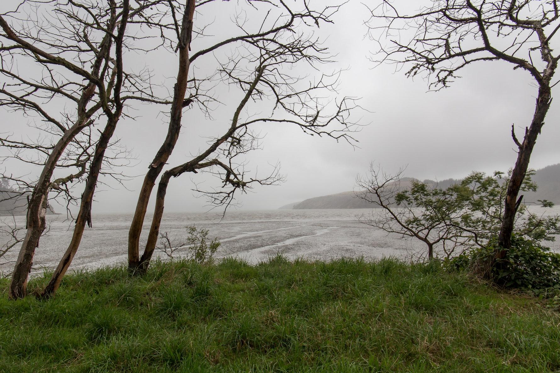 Allandale, Convict's Track, Ōhinetahi pā region.