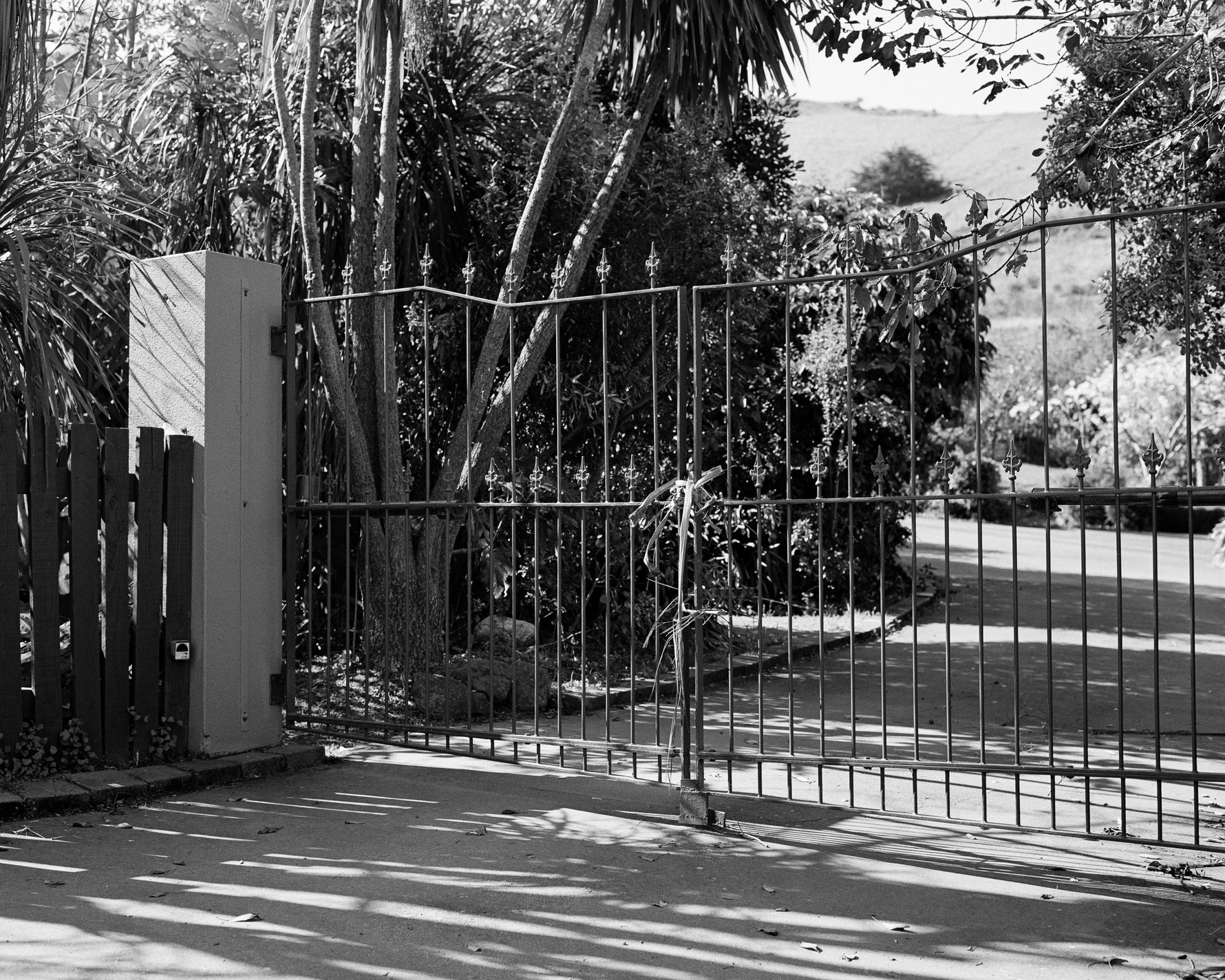 Cabbage tree leaves tie together the gate of a home on Omaru Road, Rāpaki.