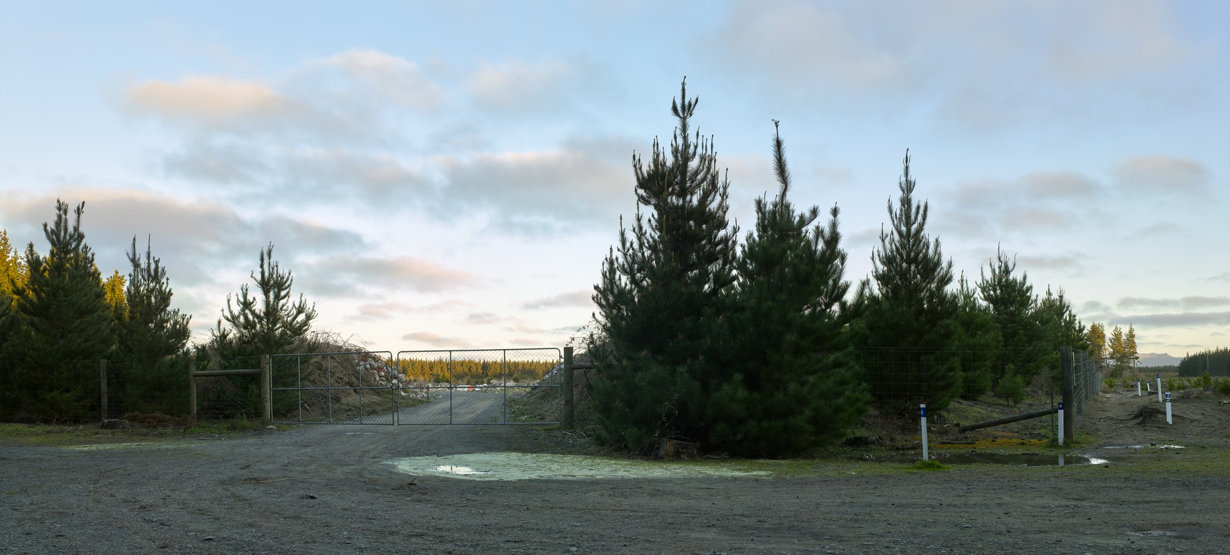 'Exclusion Zone Site D', Bottle Lake Forrest, 2016. Temporary storage site for sensitive earthquake demolition materials.