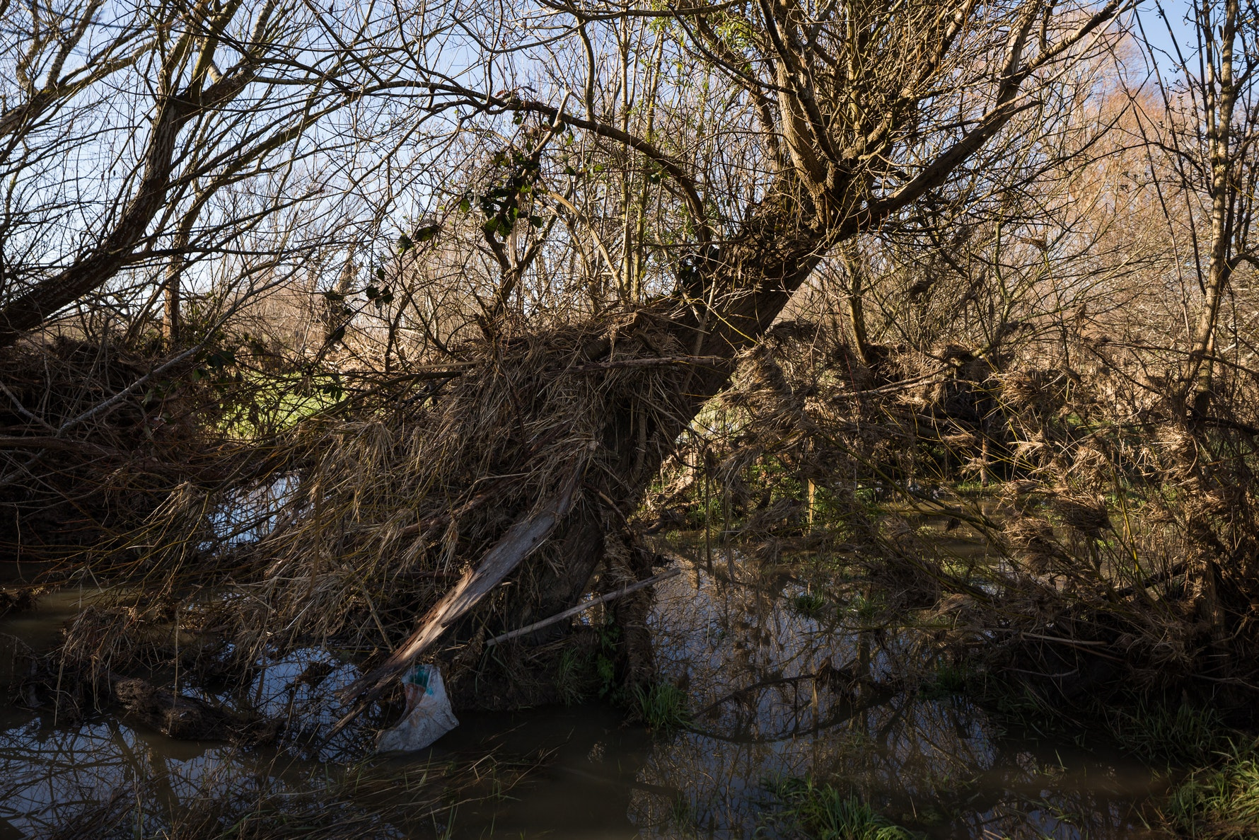 Litter After Flood, Coes Ford
